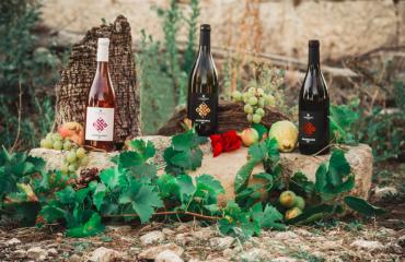 San severo da degustare: la tradizione del buon vino si sposa con i suoi piatti tipici.